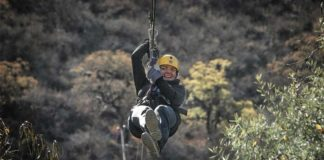 sonoma-canopy-tours