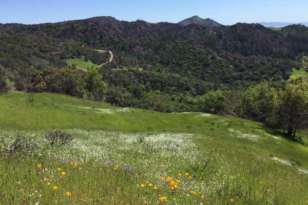 sugarloaf-ridge-park