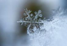 Snowflake Weekender